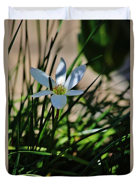 Day Lily Or Hemero - Callis Duvet Cover by Craig Wood