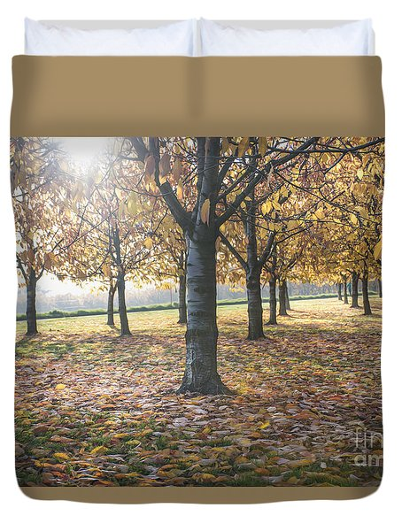 Day Of Colours Duvet Cover