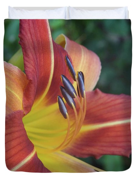 Daylilies Orange Duvet Cover by Rebecca Overton