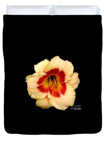 Daylily 3 Duvet Cover by Rose Santuci-Sofranko