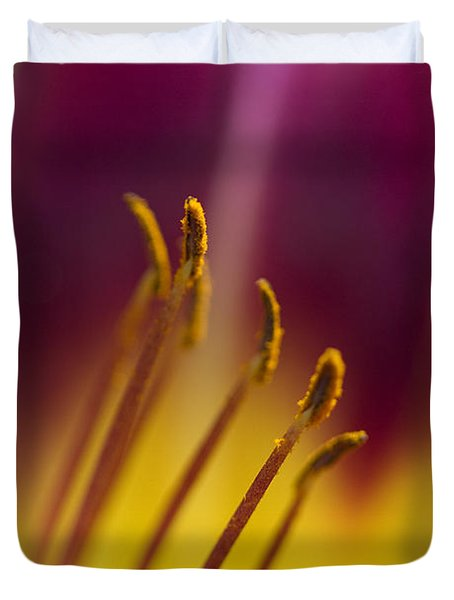 Daylily Abstract Duvet Cover by Kathy Clark