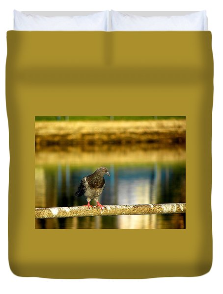 Daytona Beach Pigeon Duvet Cover