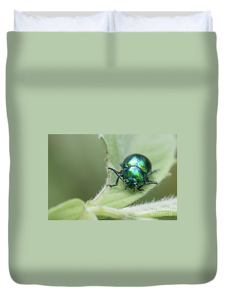 Dead-nettle Leaf Beetle - Chrysolina Fastuosa Duvet Cover