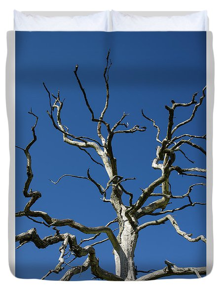 Dead Oak Tree Duvet Cover