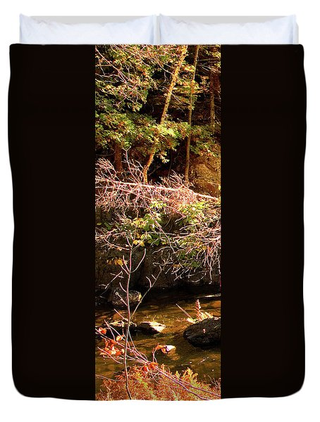 1 Of 6 Dead River Falls  Marquette Michigan Section Duvet Cover