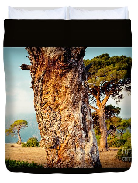 Dead Tree And Forest  Duvet Cover