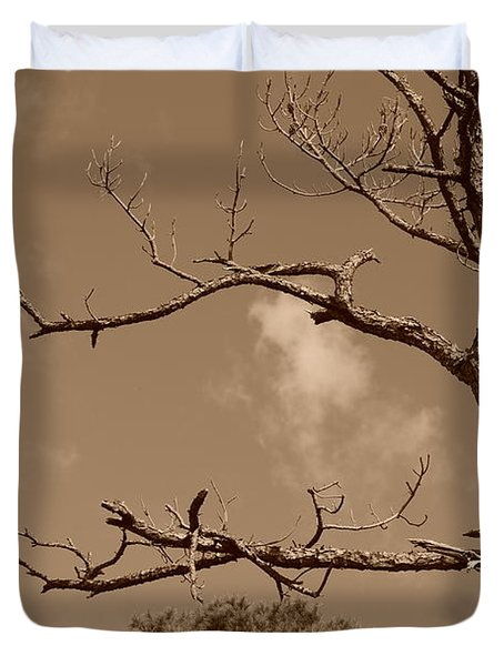 Duvet Cover featuring the photograph Dead Wood by Rob Hans