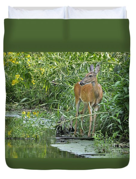 Duvet Cover featuring the photograph Deer In Beautiful Stream by Nava Thompson