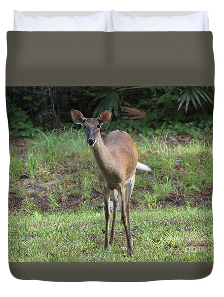 Duvet Cover featuring the photograph Deer Friend by Dodie Ulery