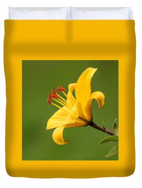 Duvet Cover featuring the photograph Dear Lily by Roy McPeak