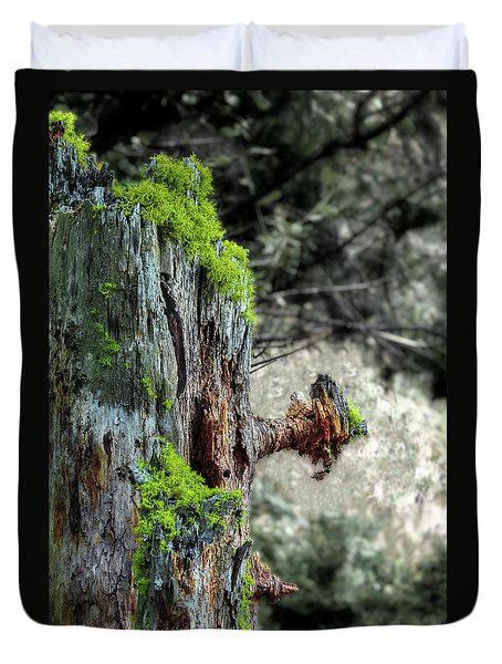 Death And Life Along The Path Duvet Cover