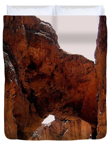 Death Valley Arch Duvet Cover by Marty Koch