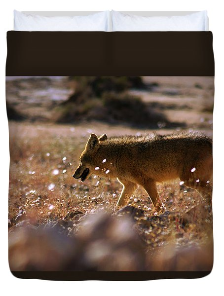 Death Valley Coyote And Flowers Duvet Cover by Daniel Woodrum