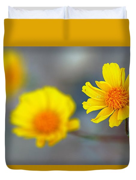 Death Valley Superbloom 204 Duvet Cover by Daniel Woodrum