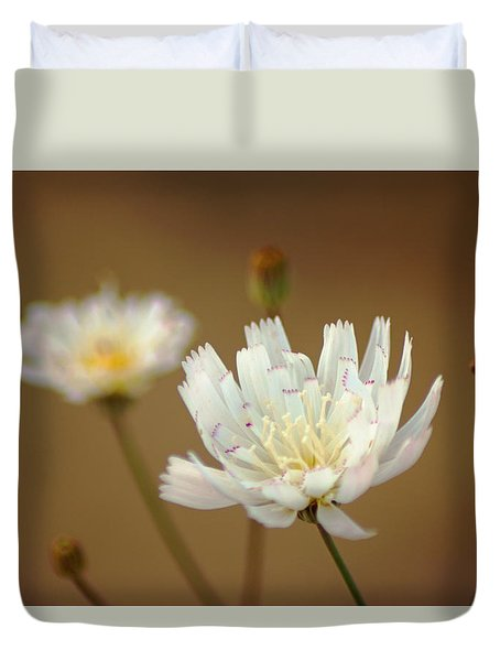 Death Valley Superbloom 303 Duvet Cover by Daniel Woodrum