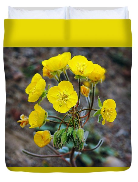 Death Valley Superbloom 306 Duvet Cover by Daniel Woodrum