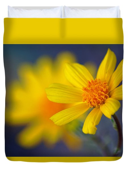 Death Valley Superbloom 503 Duvet Cover by Daniel Woodrum