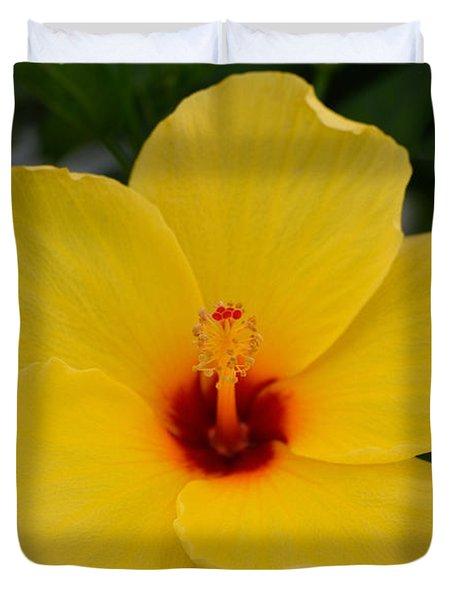 Decorative Floral Photo A9416 Duvet Cover
