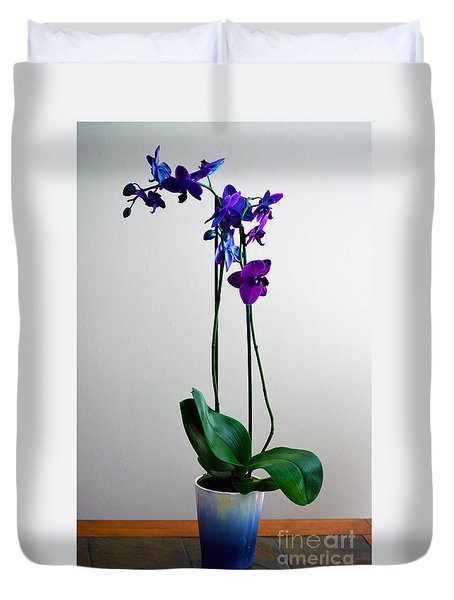 Duvet Cover featuring the photograph Decorative Orchid Photo A6517 by Mas Art Studio