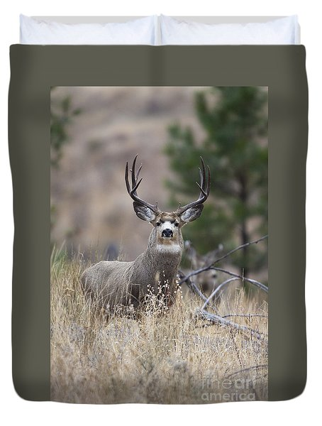 Deep Forest Duvet Cover