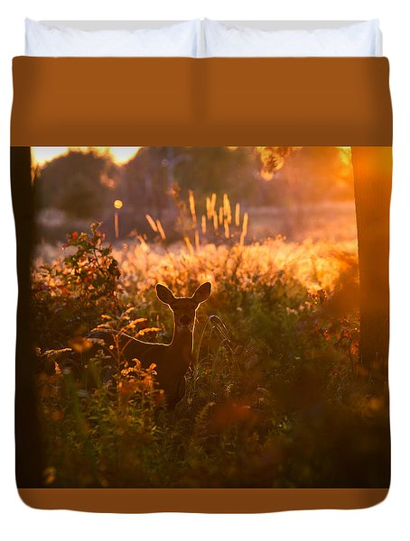 Deer At Ojibway Park Duvet Cover