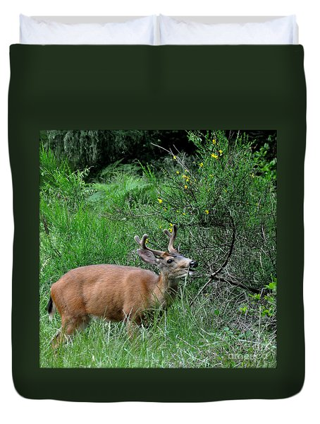Duvet Cover featuring the photograph Deer Brunch by Tanya Searcy