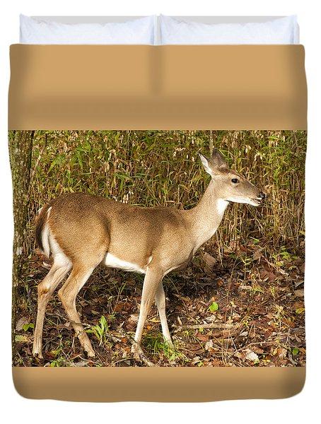 Deer In Morning Ligh Duvet Cover