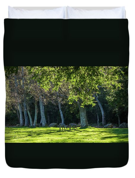 Deer In The Afternoon Sun Duvet Cover