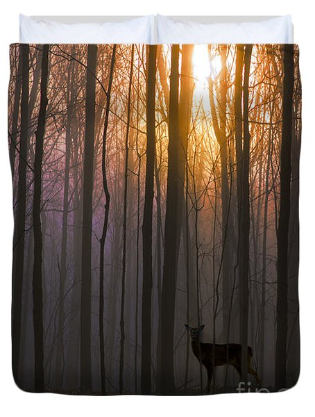 Deer In The Forest At Sunrise Duvet Cover by Diane Diederich
