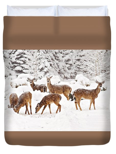 Duvet Cover featuring the photograph Deer In The Snow 2 by Angel Cher