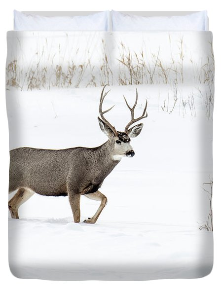 Duvet Cover featuring the photograph Deer In The Snow by Rebecca Margraf