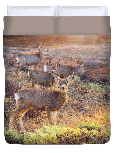 Duvet Cover featuring the photograph Deer In The Sunlight by Darren White