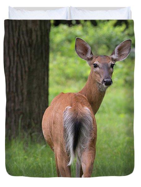 Deer Looking Back Duvet Cover