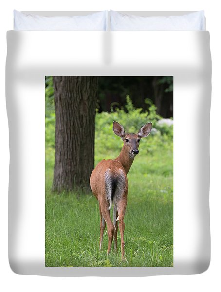 Deer Looking Back Duvet Cover