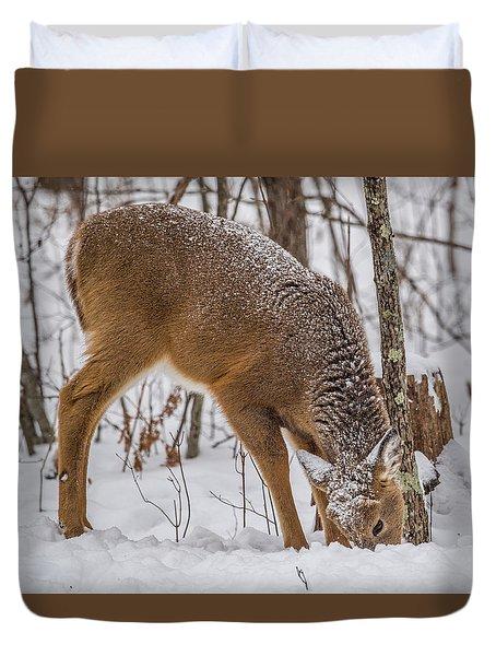 Deer Looking For Food Duvet Cover