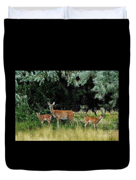 Duvet Cover featuring the photograph Deer Mom by Larry Campbell