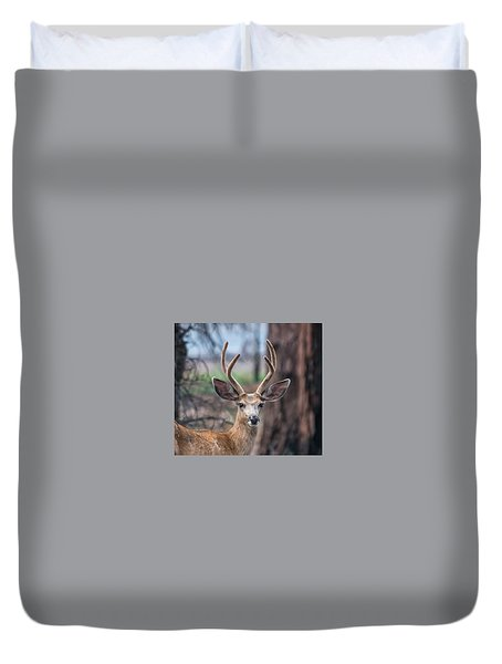 Deer Stare Duvet Cover