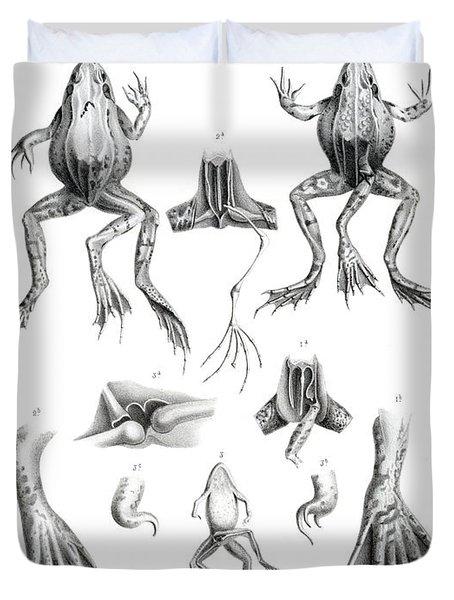 Deformed Frogs Duvet Cover
