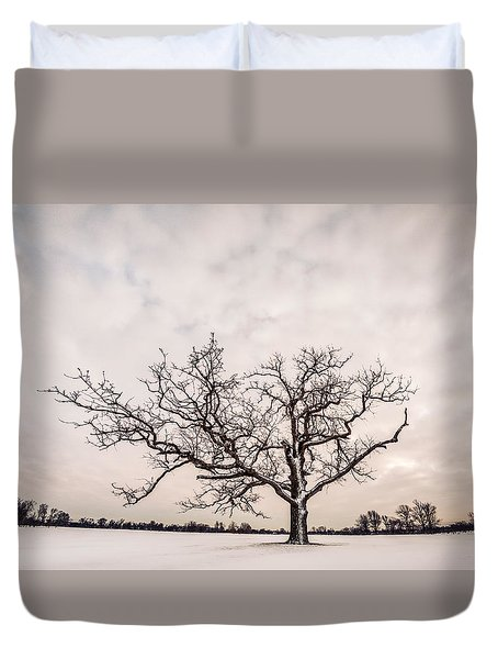 Delaware Park Winter Oak - Color Duvet Cover