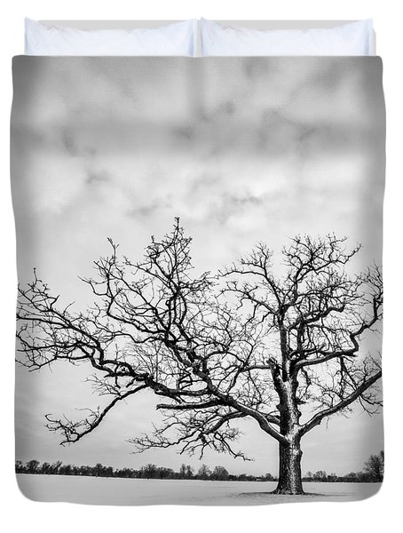Delaware Park Winter Oak - Square Duvet Cover