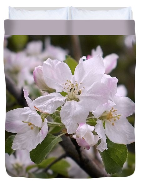 Delicate Apple Blossoms Duvet Cover by Rona Black