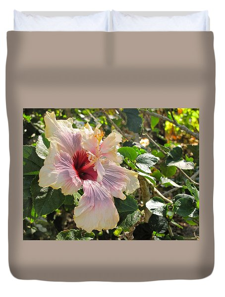 Delicate Expression Duvet Cover
