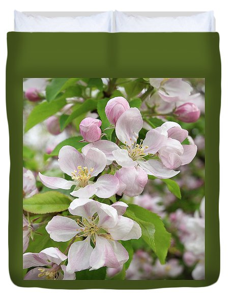 Delicate Soft Pink Apple Blossom Duvet Cover by Gill Billington
