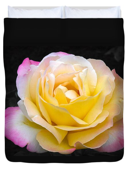Delightful Blushing Rose  Duvet Cover