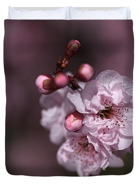 Delightful Pink Prunus Flowers Duvet Cover