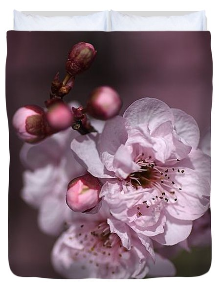 Delightful Pink Prunus Flowers Duvet Cover by Joy Watson