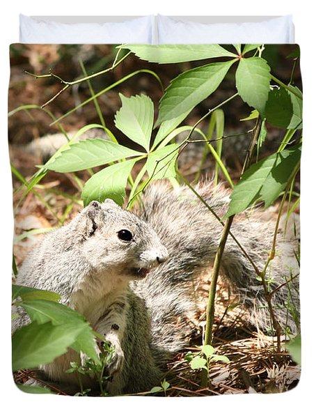 Delmarva Fox Squirrel - Local Rock Star Duvet Cover