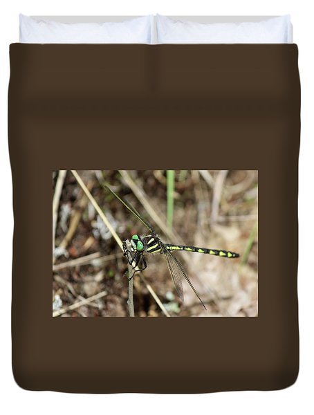 Delta-spotted Spiketail  Male Duvet Cover