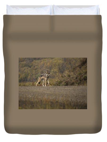 Denali Park Wolf Duvet Cover