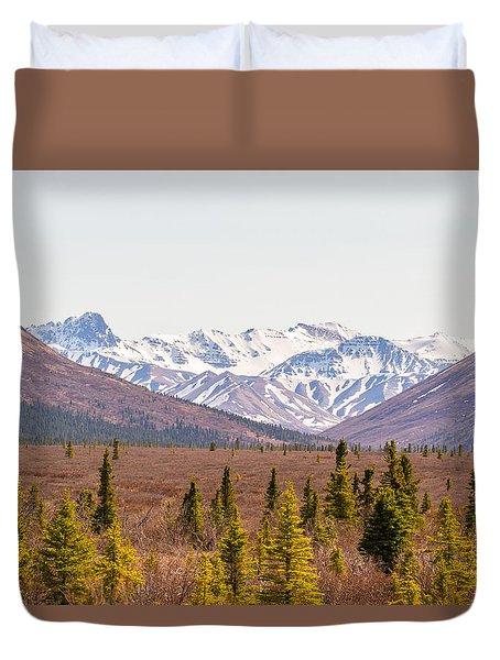 Denali Wilderness Beauty Duvet Cover by Allan Levin